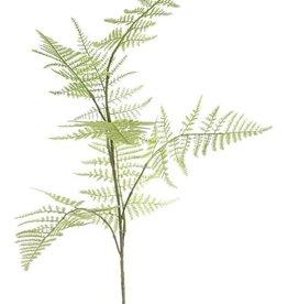"""Asparagus branch """"Bella"""" medium, 7 lvs., 86cm"""