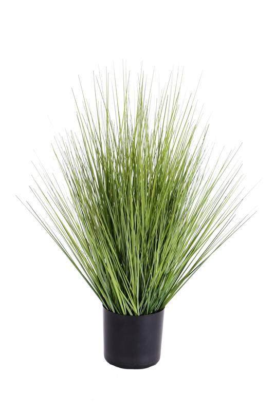 Grass bush in pot, 61 cm