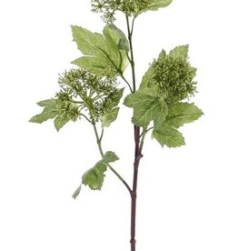 Snowball (viburnum) budsspray, 3 clusters, 10 leaves, 60cm