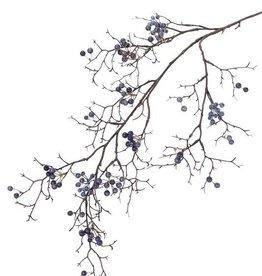 Berry branch, wild, 21 clusters bessen, 100cm