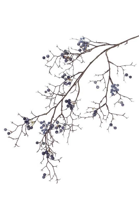 Bessentak wild, 21 clusters bessen, 100cm