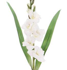 Gladiolo con 5 flores, 8 capullos y 2 hojas, 83 cm