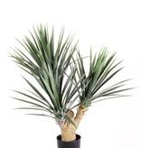 Yucca rostrata x3 stammen, 141 plastic bladeren, in zwarte plastic pot, 70cm UV bestendig