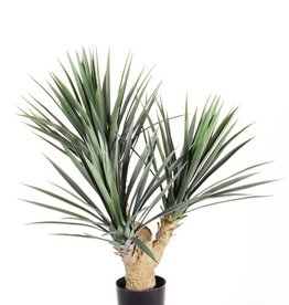 Yucca rostrata with 3 stems, 141 plastic lvs, 90cm UV safe