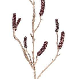 Limpiabotellas - Callistemom con 9 cápsulas, 90cm