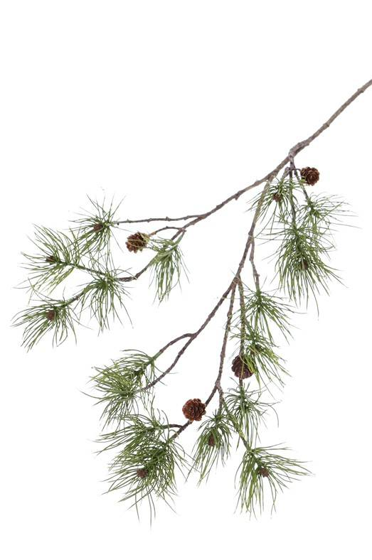 Tannenzweig (Pinus), 4 real cones, 17 pine clusters, 110cm