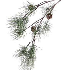 "Dennentak (Pinus) ""Frosted"", 4 real cones & 10 pine clusters, 81cm"