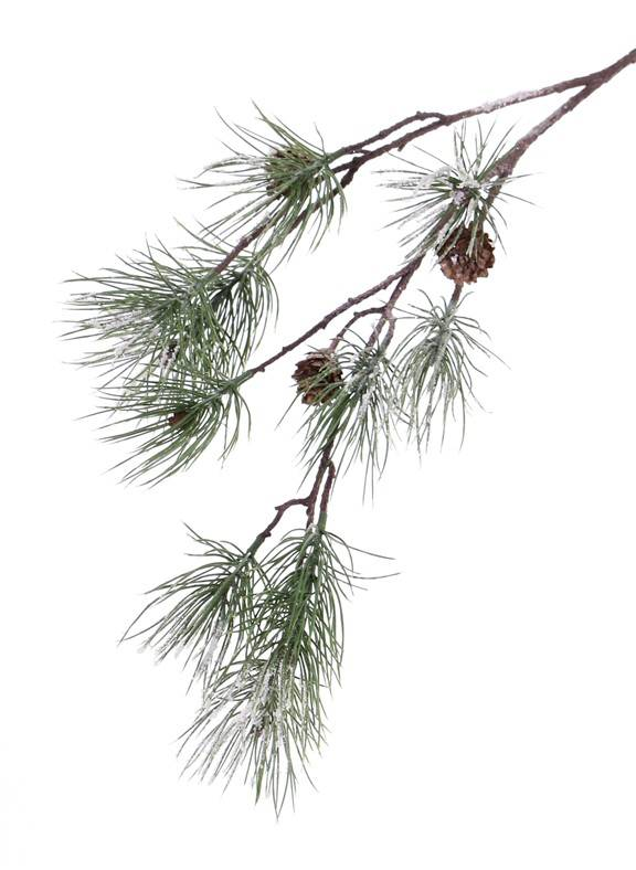 "Pine spray (Pinus) ""Frosted"", 4 real cones & 10 pine clusters, 81cm"