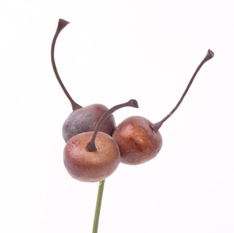 Malus Zieräpfelchen x3 zum Stecken, 18cm, Ø 2cm