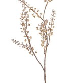 """Berry branch """"Dried Nature"""", 8 clusters bessen, 68cm - special price"""