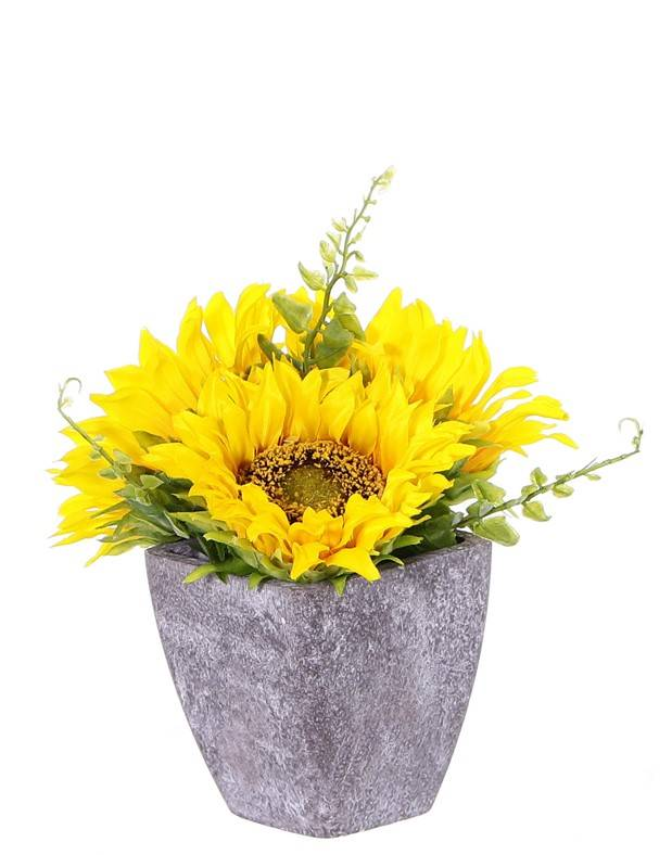 Sunflower table-deco, 3 flowers (Ø9cm/11cm) & 4 leaves, in paper pot  (Ø8cm), 18cm height - special price