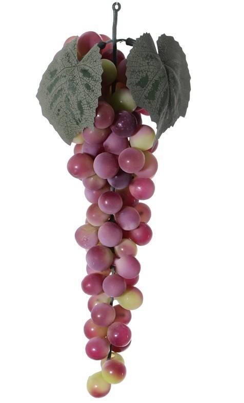 Druiventros met 90 druiven