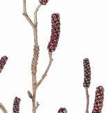 Zylinderputzerzweig (Callistemon) mit 9 Fruchtständen, 90cm