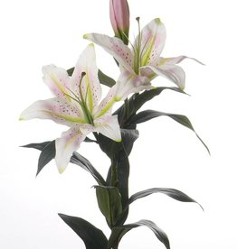 Lily Casablanca king-size, real touch 95cm