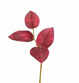 Apfelblattzweig, kurz, 4 Blätter, 35 cm