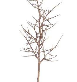 """rama de Gleditsia triacanthos """"Dried nature"""" 78cm - offerta especial"""