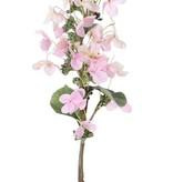 """Hortensie paniculata """"Top Art 60!"""" Ø 14 cm und 36 Blütenblätter & 3 Blätter & 16 Knospe, 75 cm"""