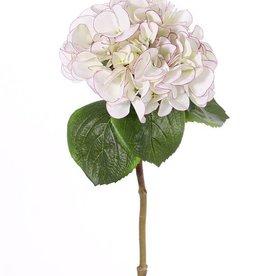 "Hortensia ""Sensitive"", Ø 18cm, 52 flores, 5 hojas, 60cm"