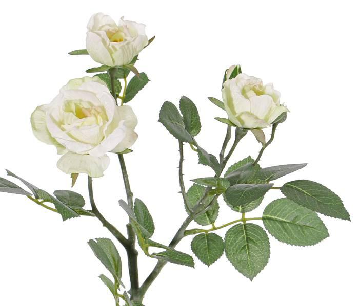 "Rosenzweig ""Elsa"", 3 Blumen, (Ø 7/5/3,5cm), 2 Knospen, 32 Blätter, 48 cm"