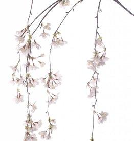Flores de cerezo, colgante, 91 flores, 120cm