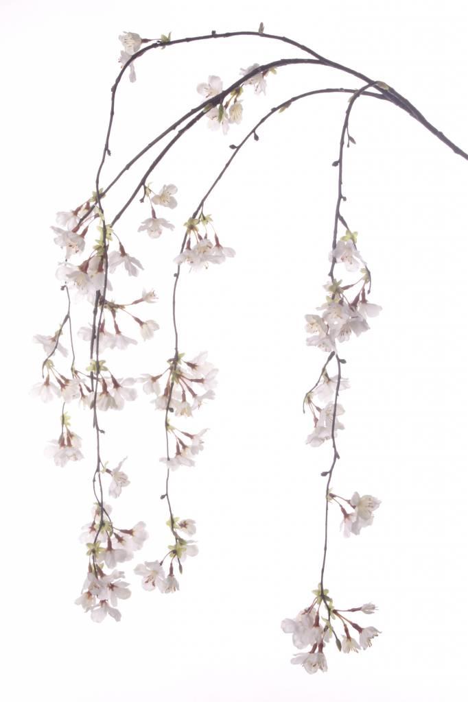 Kirschbluetenzweig, haengend, mit 91 Blueten, 120cm