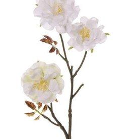 "Wild rose twig, ""Little Joy"" x3 flrs & 10 lvs., 38cm"