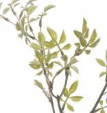 """Rama hojas de  rositas """"little joy"""", tallo corto,  43cm"""