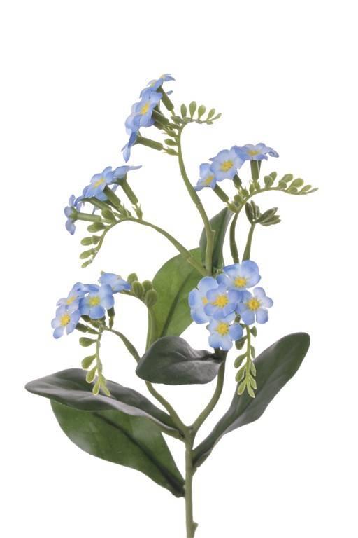 Myosotis, 24 flores, 63 capullos, 6 hojas, 36cm