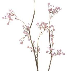 "Gypsophila ""Fantasy"" mit 8 Blütenständen, 66cm"