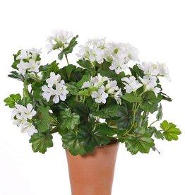 Oesterreichische Geranien (Pelargonium) 40cm, mit 92 Blättern u. 108 Blüten  UV sicher