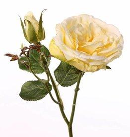 "Rama de Rosa, ""Little Joy"", 1 flor, 1 capullo, 38cm, Ø 8cm"