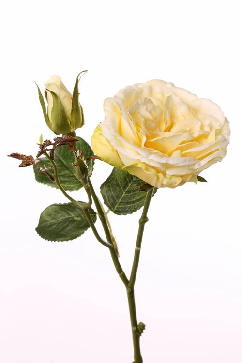 "Rose twig ""little joy"" 1 flower, 1 bud, 38cm, Ø 8cm"