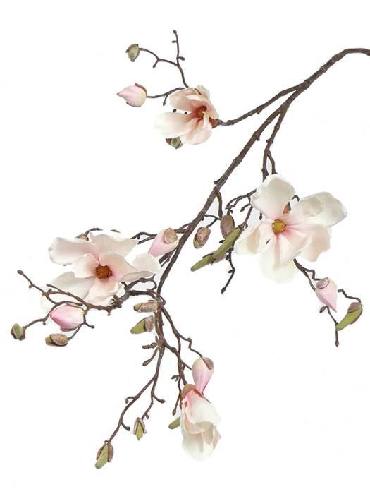 Magnolia tak 4 bloemen, 22 knoppen, 107cm