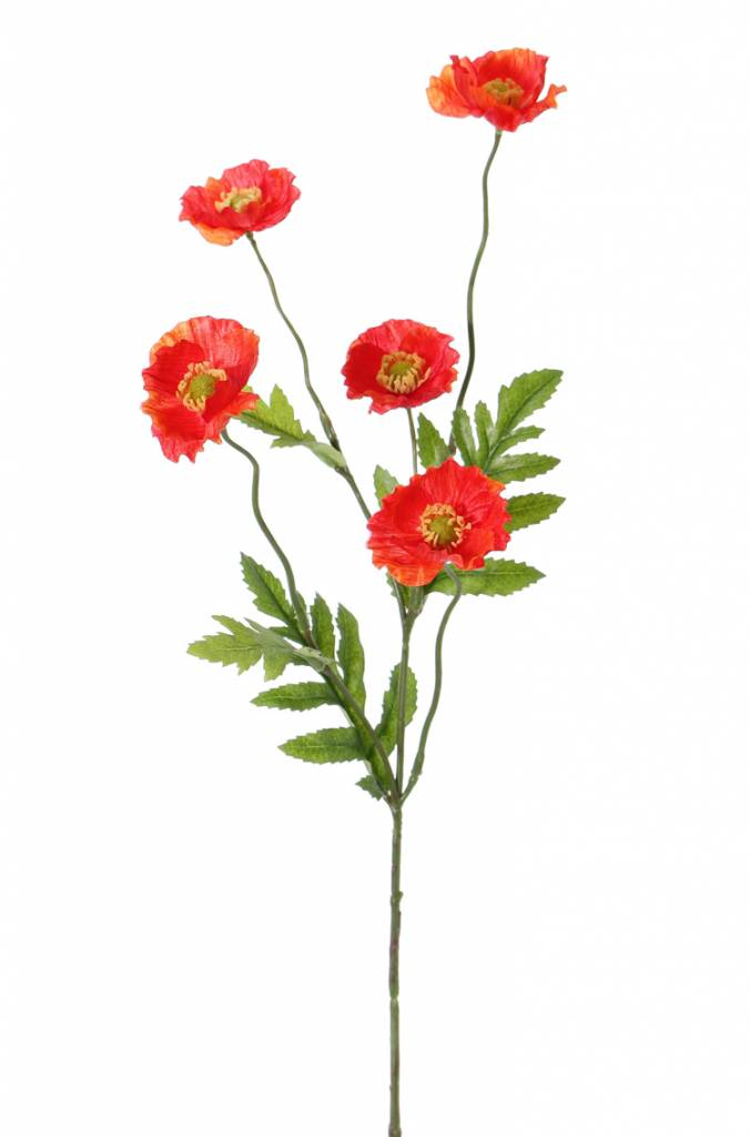 Papaver spray (Klaproos) 5 bloemen (Ø 5cm), 4 blad, 63cm