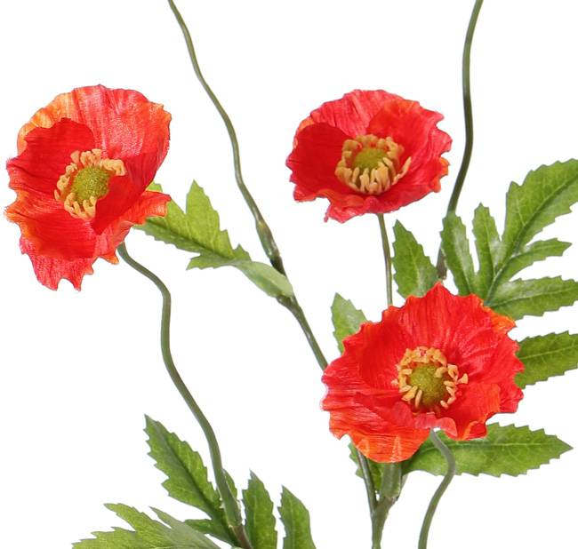 Mohnblume, 5 Blüten, (Ø 5cm), 4 Blätter, 63cm