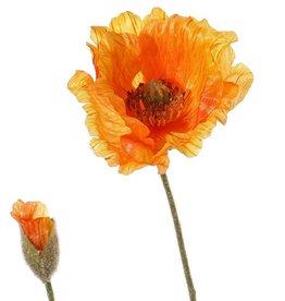 Papaver (Klaproos) 'Shiny', 1 bloem (3 laags, Ø 12cm) & 1 knop, flocked, 2 blad, 65cm
