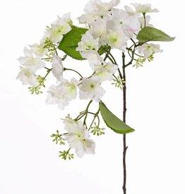 Hydrangea macrophylla (Hortensia), 31 flores, 4 hojas, 15 grupos de capullos, 96cm