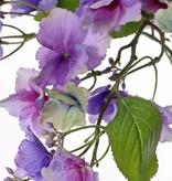 Hydrangea macrophylla (Hortensia) met 31 bloemen, 4 blad & 15 clusters knop, 96cm