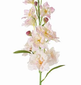 Delphinium, 12 flores., 8 capullos, 3 hojas,  60 cm