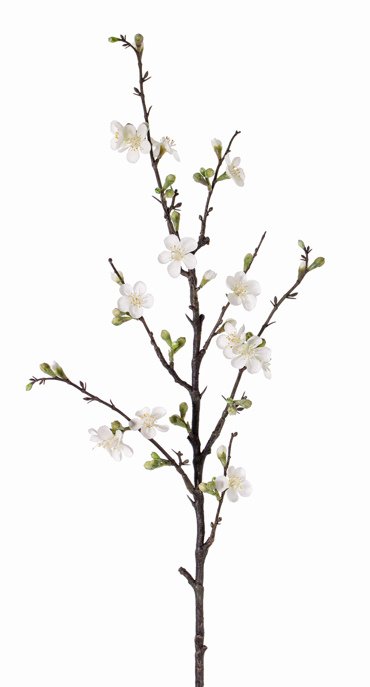 Apple blossom branch 'Quince', x 14flrs, 27 buds, 86cm