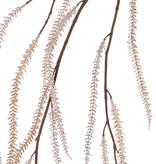 """Amaranthus  colgante """"Ruby"""", 15 espigas, 120cm"""