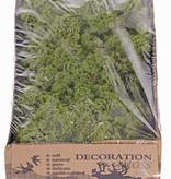 Ijslandmos (rendiermos), doos v 500 gr - medium green