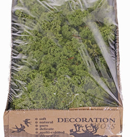 Icelandic moss (reindeer moos), box of 500 gr - medium green