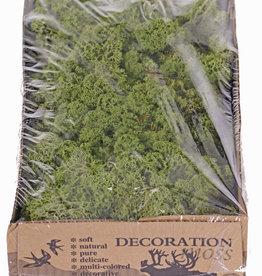 Liquen de Islandia natural (Musgo), caja de 500gr - verde medium