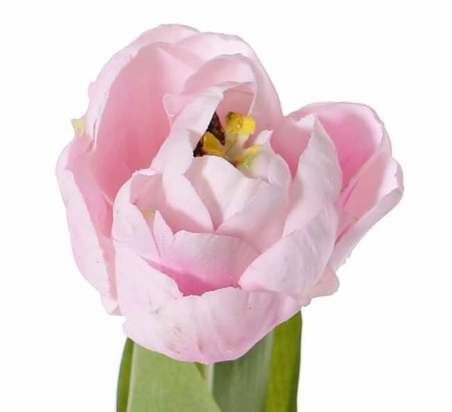Tulp 'Full Bloom', x1 (ø6.5*5.5cm), 6 laags, 'Top Art 60!', 2 bladeren, REAL TOUCH, 45cm