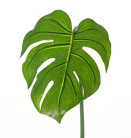 "Monstera leaf ""Naturals"" (PE), medium, ø20*25cm, 55cm"