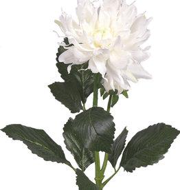 Dahlia Spray x2,  1 bloem Ø 12cm , 1 knop, 4 blad, 75cm