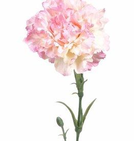 Carnation w pl bud+lv, 60cm