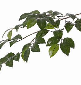 Kamelien-Blattzweig mit 4 Verzweigungen, 49 Blättern, 2 Grüntöne, 72cm