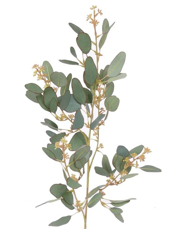Eucalyptustak met 78 bladeren, 55 knoppen, 65cm - UV bestendig